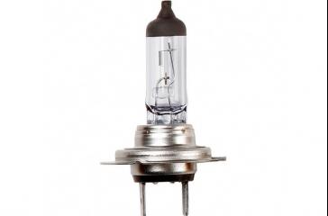 Paquete lámpara taller 12V/55W/H7